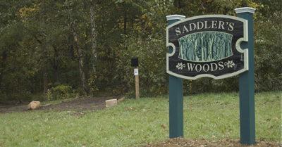 Community Service at Saddler's Woods, Aug 2019