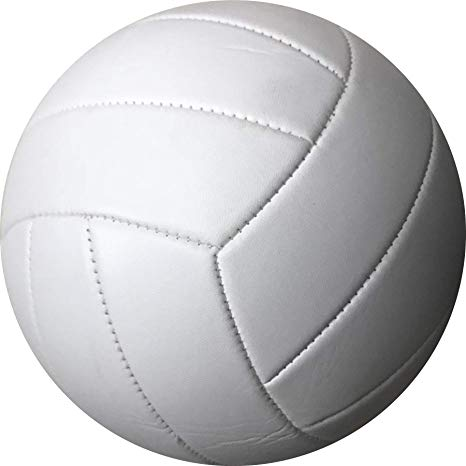 Volleyball Pick-Up Game on Aug 20